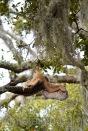 Mar 16 oops upside down