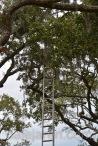 Precarious ladder position into thin air
