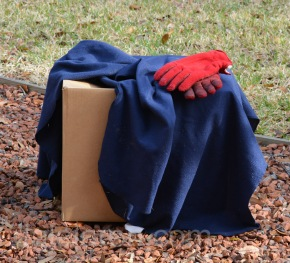 I cover box with blanket to hopefully settle it down